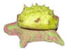 broscuta-din-plastilina