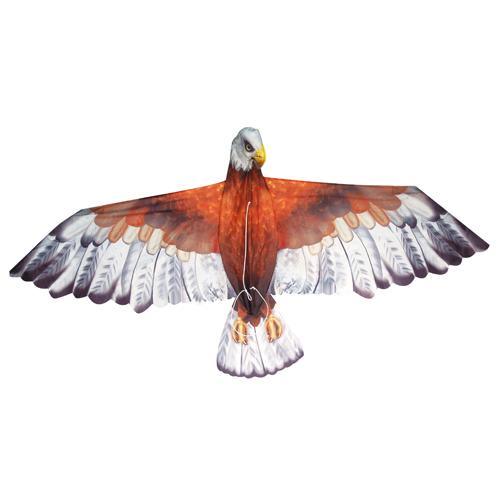 zmeu vultur