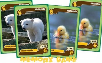Jocuri de memorie cu cartonase Mega Image