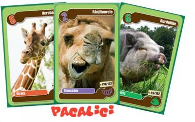 Pacalici cu cartonase Mega Image (2)