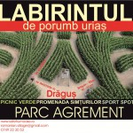 LABIRINT-DRAGUS
