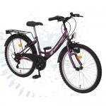 DHS-Bicicleta-Kreativ-K2014-5V-2011