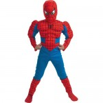 costum-spiderman