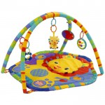 RRRoaring Fun Play Gym